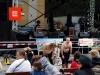 Týnské slavnosti 2011
